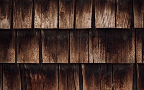Picture tree, Board, texture, wooden