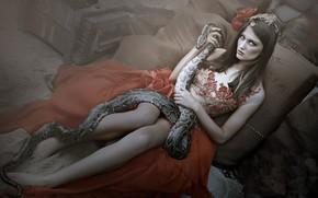 Wallpaper look, girl, snake