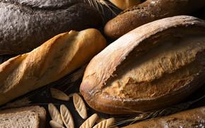 Picture bread, baguette, cuts