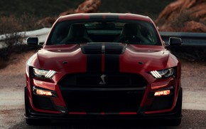 Picture Mustang, Ford, Shelby, GT500, front view, bloody, 2019
