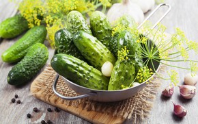 Picture food, dill, cucumbers, garlic
