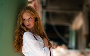 Picture hair, portrait, redhead