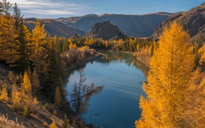 Picture autumn, landscape, mountains, nature, river, forest, Altay, Sensing