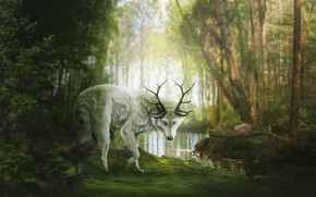 Picture forest, nature, pond, wolf, fantasy, horns, by Fiirewolf