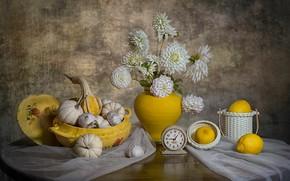Picture fantasy, bouquet, still life, lemons, White Dahlia Flowers