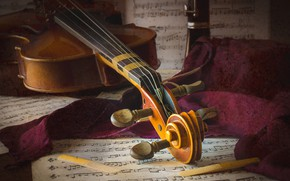 Picture macro, notes, violin
