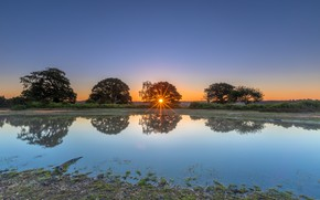 Picture the sun, rays, trees, sunset, reflection, shore, pond
