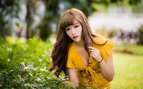 Picture girl, dress, Asian, bokeh