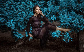 Picture look, girl, branches, nature, pose, dress, Damian Feather
