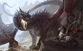 Picture sword, fantasy, Dragon, armor, weapon, fight, horse, artwork, warrior, fantasy art, creature, knight, cape