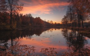Picture autumn, forest, landscape, sunset, nature, lake, pond, The suburbs, Rev Alex