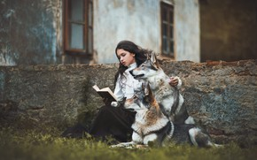 Picture dogs, girl, house, girl, book, wolves, reading, young