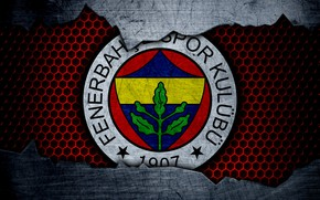 Picture wallpaper, sport, logo, football, Fenerbahce