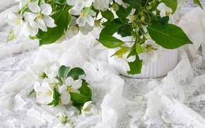 Picture flowers, bouquet, spring, vase