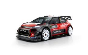 Picture Citroen, WRC, Abu Dhabi