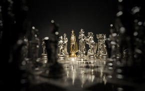 Picture style, gold, the game, Shine, focus, chess, Board, gold plated, material, figure, party, figures, Queen, …