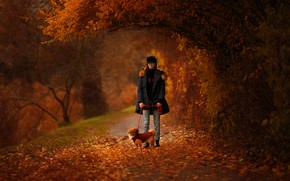 Picture autumn, girl, branches, nature, Park, foliage, dog, walk, alley, Pekingese