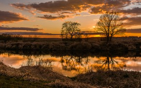 Picture autumn, the sky, trees, sunset, reflection, shore, the evening, pond, dry grass