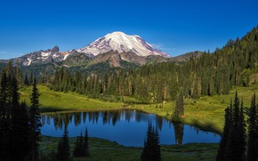 Picture forest, trees, mountains, lake, Mount Rainier National Park, National Park mount Rainier, Mt Rainier, The …