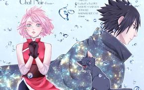 Picture cat, dreams, Naruto, Naruto, Sasuke Uchiha, Sakura Haruno
