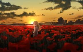 Picture girl, sunset, meadow, Angel bloodshed, Satsuriku no Tenshi