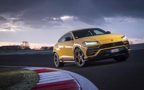 Picture the evening, Lamborghini, 2018, crossover, Urus