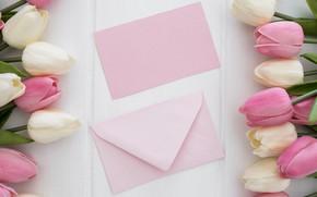 Picture letter, bouquet, tulips, the envelope