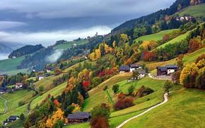 Picture autumn, nature, slope