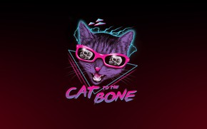 Picture Minimalism, Figure, Cat, Art, Neon, Cat, 80's, Synth, Retrowave, Synthwave, New Retro Wave, Futuresynth, Sintav, …