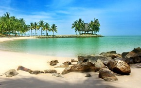 Picture sand, sea, beach, palm trees, Malaysia, Borneo