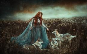 Picture girl, sword, dress, wolves, red, redhead, Marketa Novak, Zuzana Kushniruk