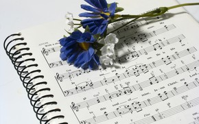 Picture flower, notes, music, notebook