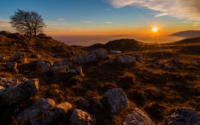 Picture field, autumn, the sky, the sun, rays, sunset, fog, stones, tree, dal, boulders, dry grass, …