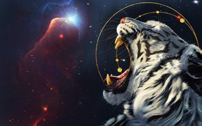 Picture The sky, Night, Stars, Tiger, Space, Nebula, Star, Mouth, Face, Fantasy, Art, Stars, Space, Art, …