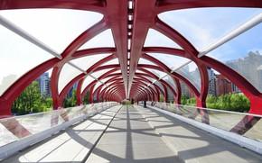 Picture bridge, the city, design