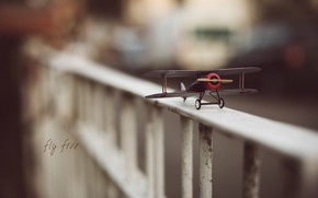 Picture toy, airplane, fly free