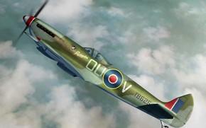 Picture fighter-bomber, Supermarine Spitfire, UK, combat aircraft, Spitfire Mk.XVIe