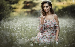 Picture look, pose, model, Girl, dress, sitting, Alina Moore