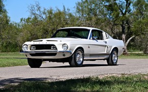 Picture Ford Mustang, Shelby GT 500, Fastback