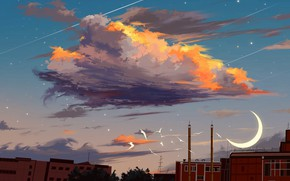 Picture the sky, birds, the city, cloud, Crescent
