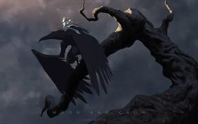 Picture fantasy, crow, fairy, wings, moonlight, artist, digital art, artwork, branch, fantasy art, creature, James Zapata, …