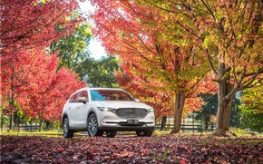 Picture machine, autumn, Mazda, white color