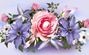 Picture flowers, clematis, rose