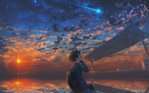 Picture the sky, water, girl, the sun, sunset, shooting star