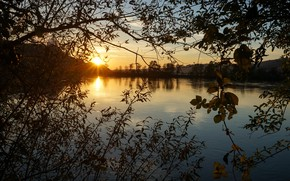 Picture the sky, grass, leaves, the sun, rays, light, sunset, branches, lake, thickets, shore, vegetation, view, …