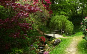 Picture greens, trees, flowers, Park, stones, England, the bridge, path, the bushes, Surrey, Ramster Gardens