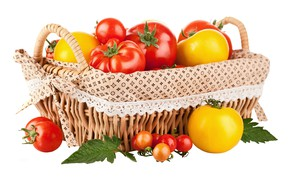 Picture basket, vegetables, tomatoes