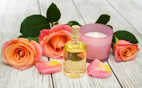 Picture oil, roses, candle, Spa, Olena Rudo