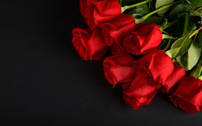 Picture flowers, roses, bouquet, red, red, buds, flowers, romantic, roses, bud