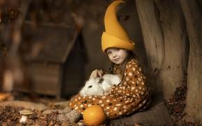 Picture autumn, tree, animal, rabbit, girl, pumpkin, trunk, dwarf, child, cap, Кузнецова Виктория